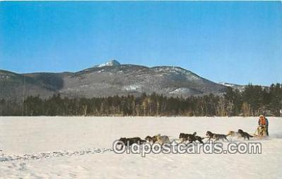 Dog Sled, Chocorua Lake