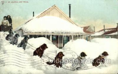 spo100009 - AK USA Dog Sledding, Old Vintage Antique Post Card Post Cards