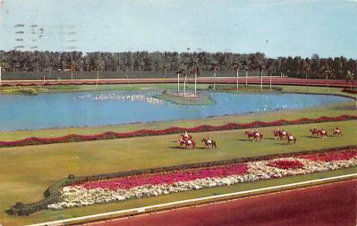 spof021723 - Hialeah, FL, USA Hialeah Race Course Horse Racing Postcard