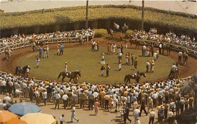 spof021778 - Del Mar, CA, USA Racing at Del Mar Horse Racing Postcard