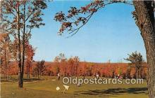 spo013530 - Golf Postcard