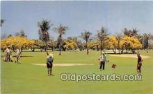 spo013561 - Golf Postcard