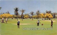 spo013562 - Golf Postcard