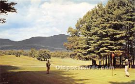 spo013625 - Old Vintage Golf Postcard Post Card