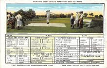 spo013652 - Old Vintage Golf Postcard Post Card