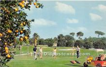 spo013727 - Old Vintage Golf Postcard Post Card