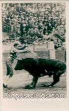 spo017004 - Bull fighting Postcard Postcards