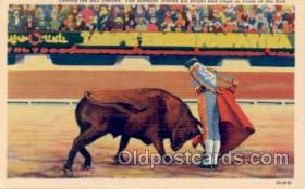 spo017006 - Bull ighting Postcard Postcards
