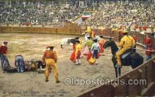 spo017016 - Bull Fighting Postcard