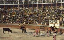 spo017017 - Bull Fighting Postcard