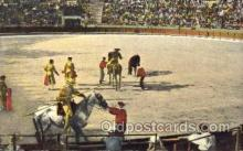 spo017022 - Bull Fighting Postcard