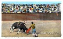 spo017107 - Mexican Bullfighting Postcard Postcards