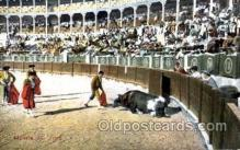 spo017109 - Muerte del ToroBullfighting Postcard Postcards