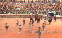 spo017140 - Bull Ring at Juarez, Chihuahua, Mexico, Bullfighting Postcard Postcards