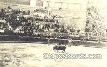spo017222 - Corrida de Toros Mexico, Bullfighting Postcard Postcards