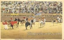 spo017234 - Opening Ceremony at Bull Fight Bull Fighing, Bullfighting Postcard Postcards