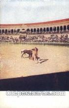 spo017254 - Bull Fight in Spain Bull Fighing, Bullfighting Postcard Postcards