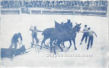spo017283 - Old Vintage Bull Fighting Postcard Post Card