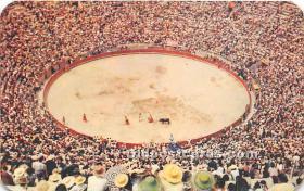 Bullfight Corrida De Toros