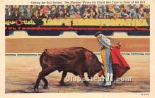 Getting the Bull Excited, The Matador Waves his Bright Red Cape in Front of the Bull