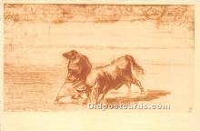 spo017385 - Old Vintage Bull Fighting Postcard Post Card