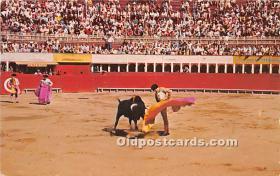 Bull Fight scene
