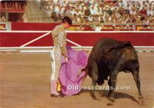 Corrida de Toros, A Pass with the cape