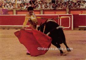 Corrida de Toros, Bull Race