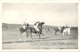 spo019010 - Polo Postcard Postcards