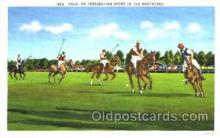 spo019018 - Polo Postcard Postcards