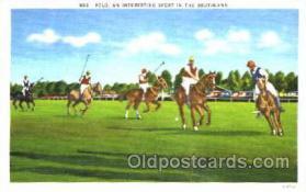 spo019019 - Polo Postcard Postcards