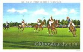 spo019026 - Polo Postcard Postcards