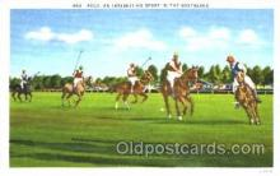 spo019028 - Polo Postcard Postcards
