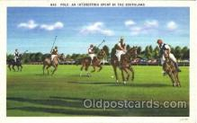 spo019034 - Polo Postcard Postcards