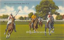 Polo on one of Aikens Fields