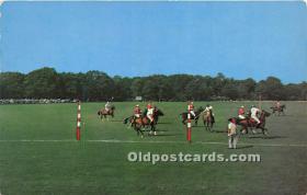 spo019037 - Old Vintage Polo Postcard Post Card