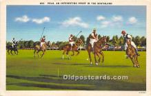 spo019038 - Old Vintage Polo Postcard Post Card