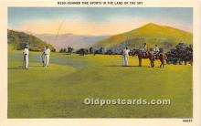 spo019041 - Old Vintage Polo Postcard Post Card