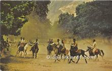 spo019043 - Old Vintage Polo Postcard Post Card