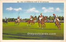 spo019054 - Old Vintage Polo Postcard Post Card