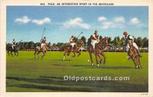spo019065 - Old Vintage Polo Postcard Post Card