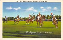 spo019071 - Old Vintage Polo Postcard Post Card