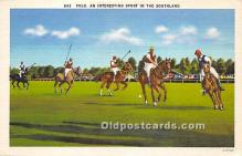 spo019074 - Old Vintage Polo Postcard Post Card