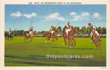 spo019077 - Old Vintage Polo Postcard Post Card