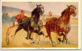 spo021004 - Horse Racing, Trotters,  Postcard Postcards