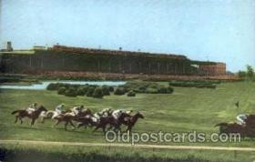 spo021010 - Belmont Park, LI postcard postcards