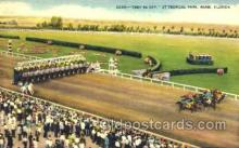 spo021037 - Miami Florida USA Horse Racing Postcard Postcards