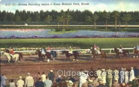 spo021039 - Hialeah Park, Miami FL USA Horse Racing Postcard Postcards