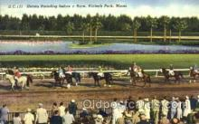 spo021045 - Hialeah Park, Miami FL USA Horse Racing Postcard Postcards