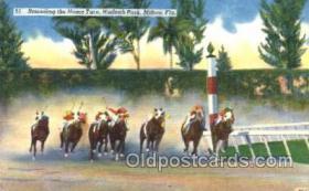 spo021049 - Hialeah Park, Miami FL USA Horse Racing Postcard Postcards